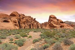 Amphetamine Detox Centers in Nevada